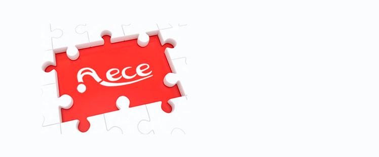 La Junta Directiva de AECE se reúne para programar el año