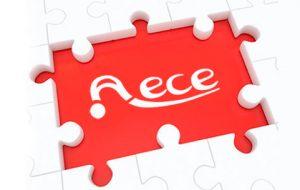 AECE-PUZZLE-1