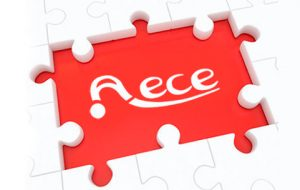 Junta Directiva AECE
